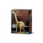 Brachiosaure Déterre ton Dinosaure Dig a dino