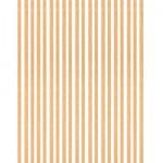Baguettes de placage en bois x 20 : Tilleul 1000 x 8 x 0.6 mm