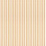 Baguettes de placage en bois x 25 : Tilleul 1000 x 4 x 0.6 mm