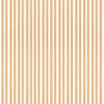Baguettes de placage en bois x 25 : Tilleul 1000 x 5 x 0.6 mm