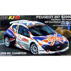 Maquette voiture : Peugeot 207 S2000 2009