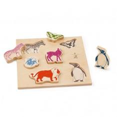 Encastrement 6 pièces en bois : Animaux colorés