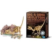 Connaissez-vous bien les dinosaures ? - Image n°24