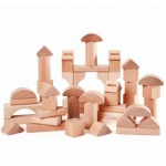 Blocs de construction naturel 50 pièces