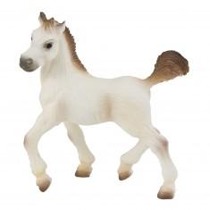 Figurine Cheval Arabe : Poulain