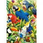 Puzzle 1000 pièces : Oiseaux du monde
