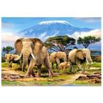 Puzzle 1000 pièces : Réveil matinal près du Kilimanjaro