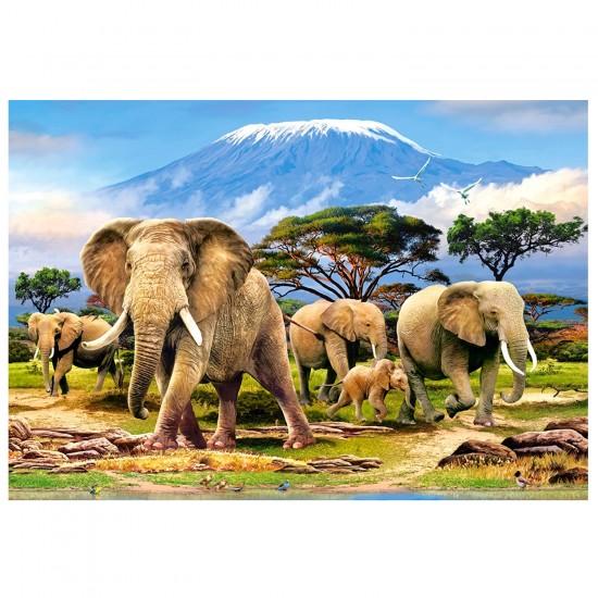 Puzzle 1000 pièces : Réveil matinal près du Kilimanjaro - Castorland-C-103188-2