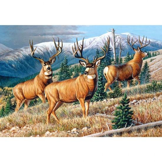 Puzzle 1500 pièces : Dans la montagne - Castorland-151264