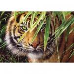 Puzzle 1500 pièces - Tigre : A l'affût