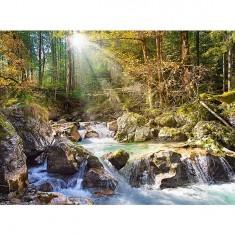Puzzle 2000 pièces - Le ruisseau de la forêt