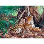 Puzzle 3000 pièces - Jaguars dans la forêt