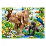 Puzzle 35 pièces : Bébés Animaux de la Jungle
