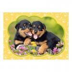 Puzzle 35 pièces : Petits Rottweilers