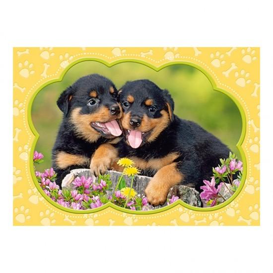 Puzzle 35 pièces : Petits Rottweilers - Castorland-035205