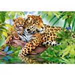 Puzzle 500 pièces : Jaguars