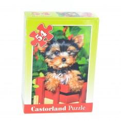 Puzzle 54 pièces : Mini puzzle : Bébé yorkshire