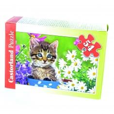Puzzle 54 pièces : Mini puzzle : Chaton au milieu des fleurs