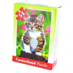 Puzzle 54 pièces : Mini puzzle : Chaton sur une souche