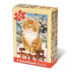 Puzzle 54 pièces - Mini puzzle : Pause hivernale du chaton roux