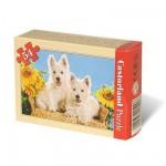 Puzzle 54 pièces - Mini puzzle  - Chiots blancs : Vive l'été !