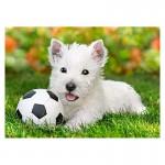 Puzzle 60 pièces : White Terrier et Football