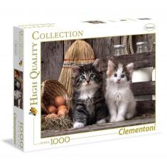 Puzzle 1000 pièces : chatons