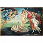 Puzzle 1000 pièces - Botticelli : Naissance de Vénus
