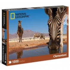 Puzzle 1000 pièces National Geographic : Zèbres