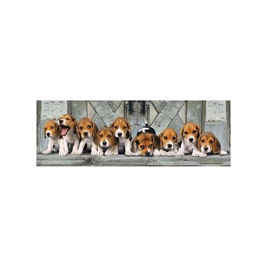 Puzzle 1000 pièces panoramique - Beagle - Clementoni-39076