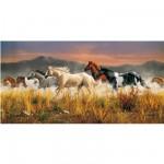 Puzzle 13200 pièces - Troupeau de chevaux