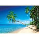 Puzzle 1500 pièces : Martinique, Iles des Caraibes