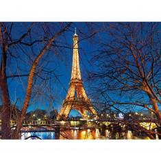 Puzzle 2000 pièces : Tour Eiffel illuminée