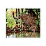 Puzzle 2000 pièces - Le léopard