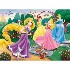 Puzzle 250 pièces - Raiponce et ses amies