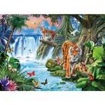 Puzzle 3000 pièces : Famille de tigres
