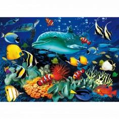Puzzle 1000 pièces - Effet 3D : Vie sous marine