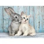 Puzzle 500 pièces : Chaton et lapin
