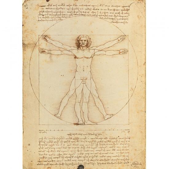 Puzzle 500 pièces : Léonard de Vinci : l'Homme de Vitruve - Clementoni-35001