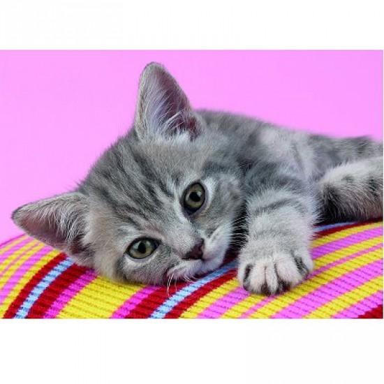 Puzzle 500 pièces - Petit chat calin - Clementoni-30362