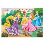 Puzzle cadre 15 pièces : Princesses Disney dans le jardin