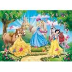 Puzzle cadre 15 pièces : Princesses Disney et leurs chevaux