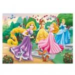 Puzzle cadre 15 pièces : Princesses Disney