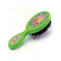 Brosse à cheveux : Chouette et fruits