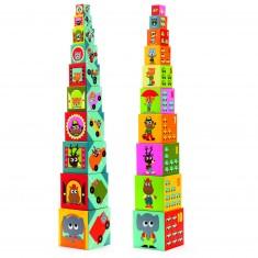 Cubes Véhicules