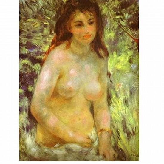 Puzzle 1000 pièces - Renoir : Nu dans le soleil - Dtoys-66909RE04