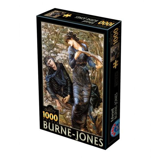 Puzzle 1000 pièces : Edward Burne-Jones : La séduction de Merlin - Dtoys-72733BU02