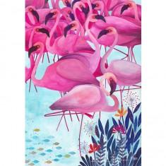 Puzzle 1000 pièces : Kürti Andrea Tropical : Flamands roses