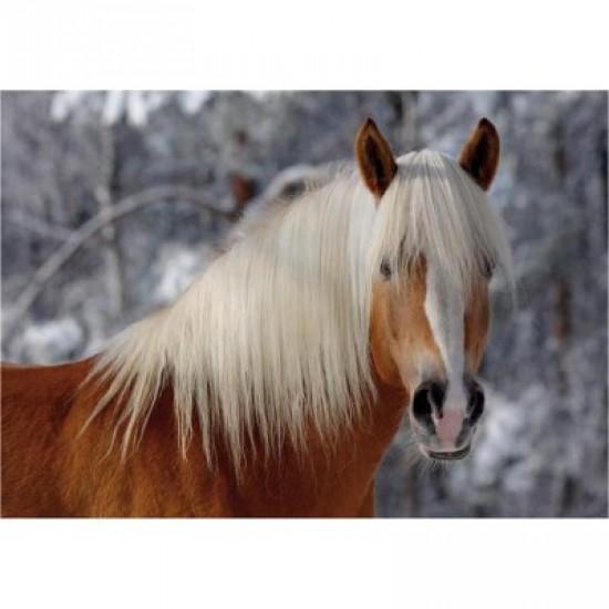 Puzzle 239 pièces - Magie des chevaux : Cheval Haflinger I - DToys-65933HH01