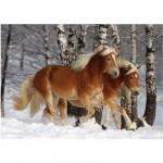 Puzzle 239 pièces - Magie des chevaux : Cheval Haflinger III
